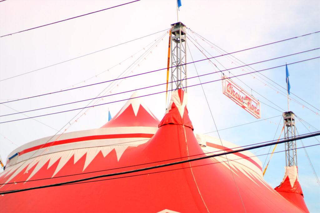 circus1_edited-1