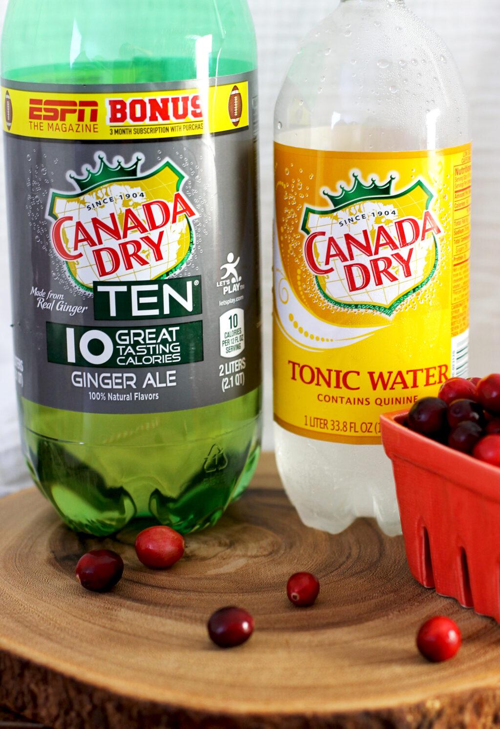 cranberry-ginger-gin-fizz