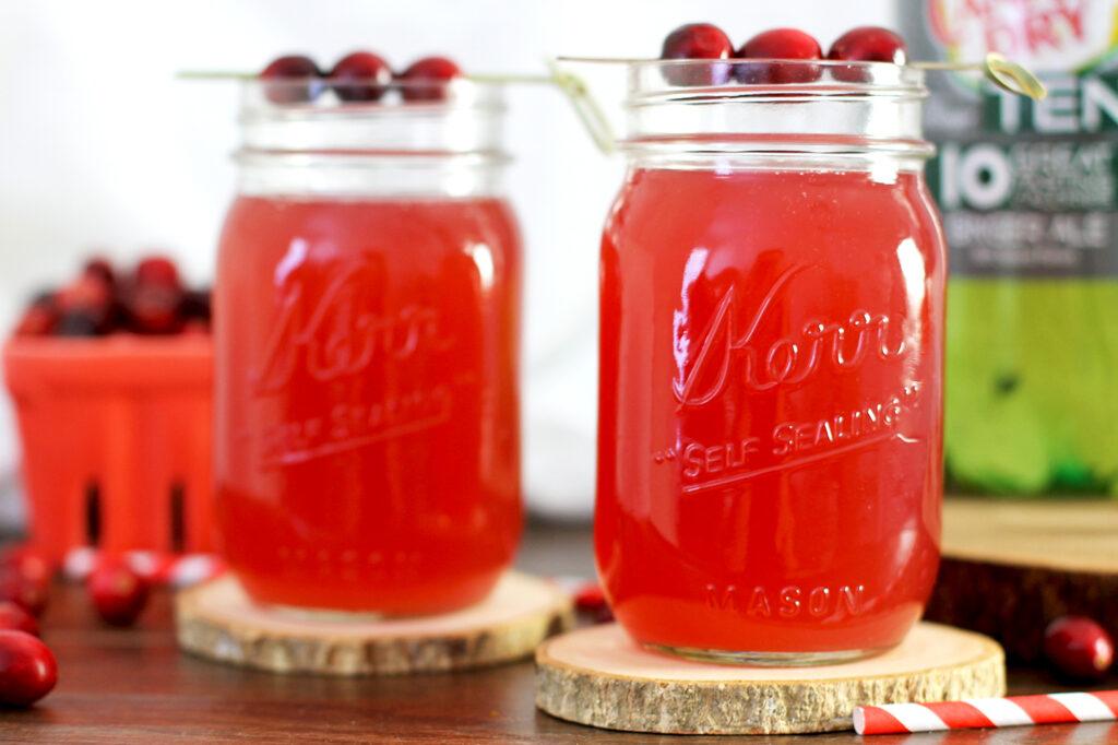 cranberry-ginger-gin-fizz1