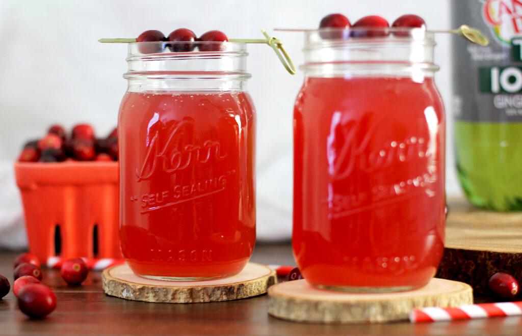 cranberry-ginger-gin-fizz2
