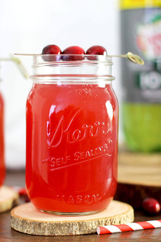 cranberry-ginger-gin-fizz3