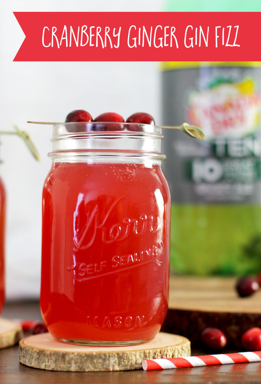 This cranberry ginger gin fizz is the perfect holiday cocktail! It's easy to make, and tastes DELISH!