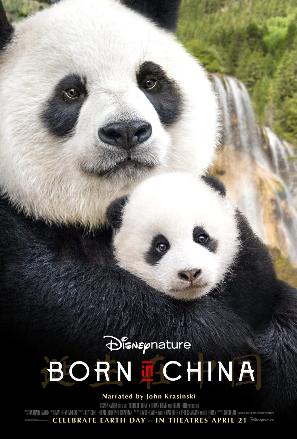 Disneynature Born in China: Ray Conli's Thoughts on Parenting Lessons Within The Film by lifestyle blogger Carly of Lipgloss and Crayons