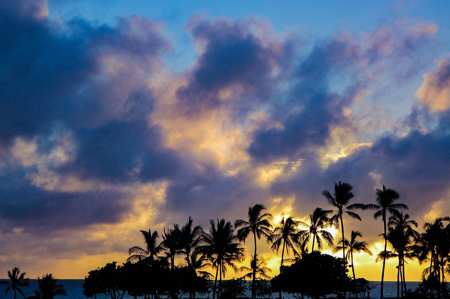 How stunning is this sunset from the beach at Disney Aulani?
