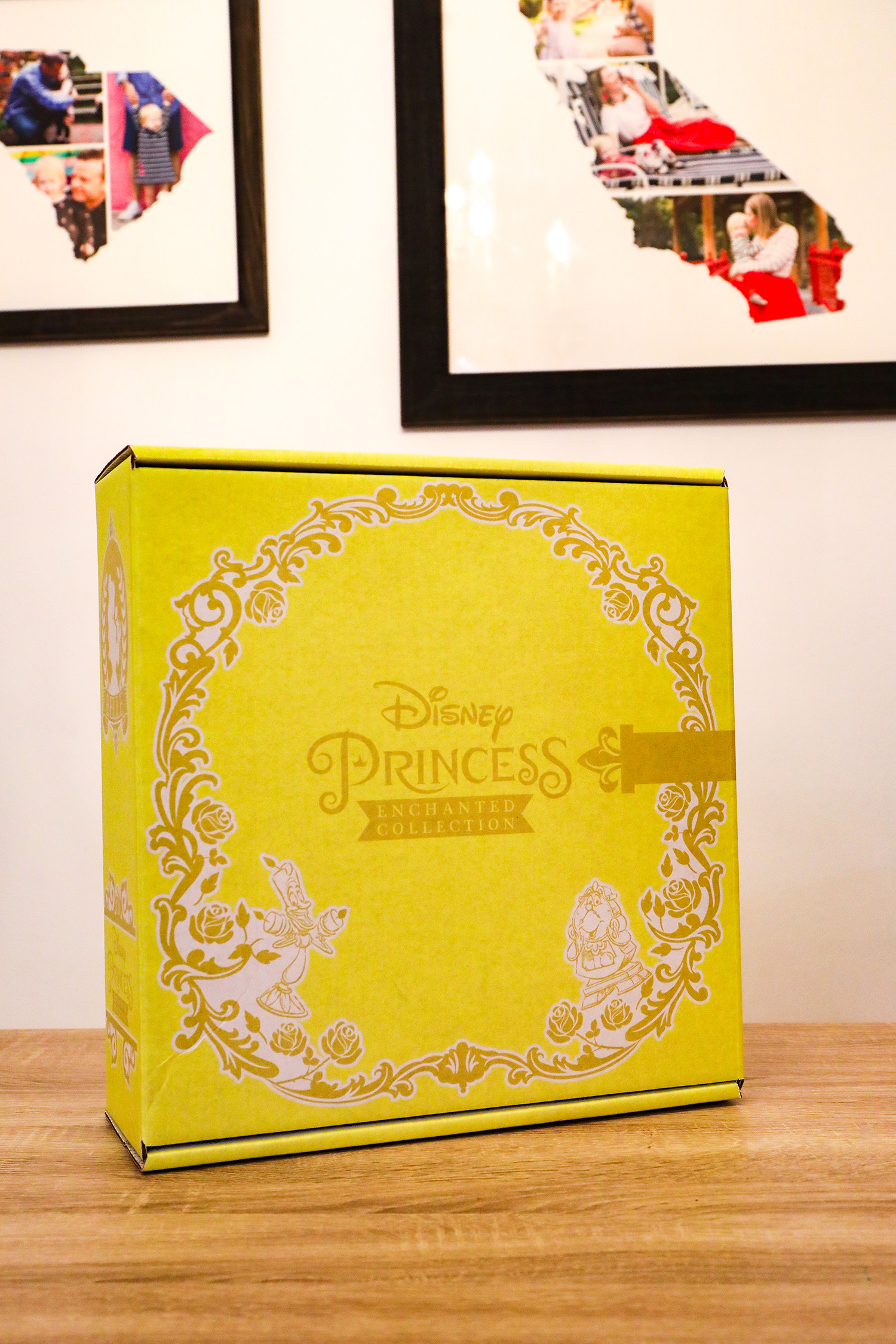 Want the scoop on the Disney Princess Subscription Box?  We tried it out, and I'm telling you if it's truly worth every penny!
