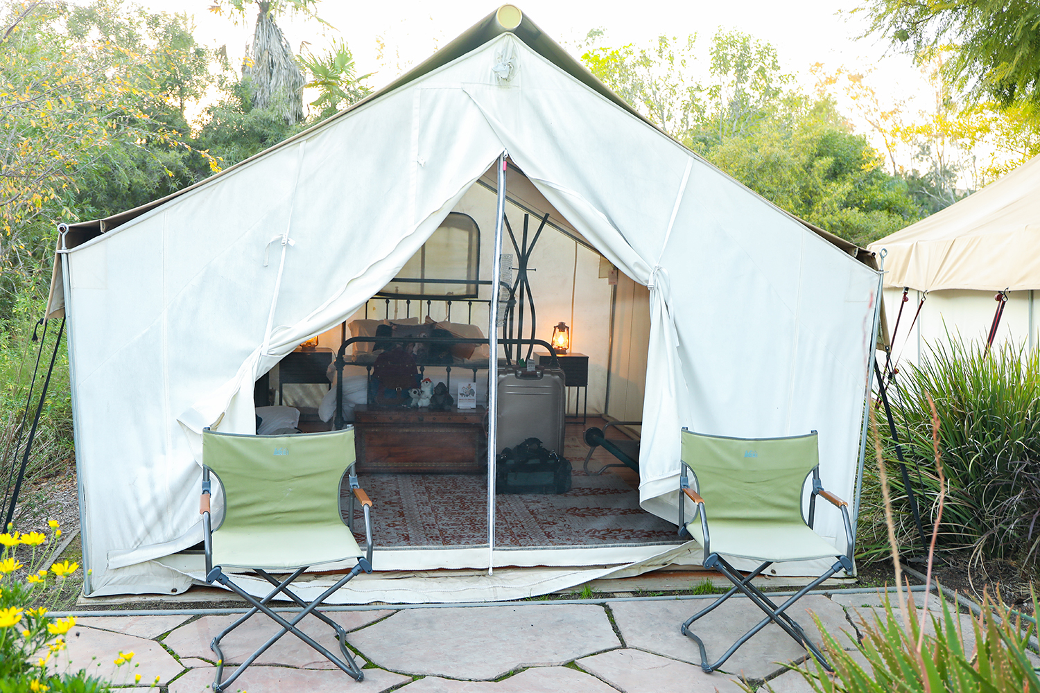 Roar and Snore: San Diego Safari Park premium tent