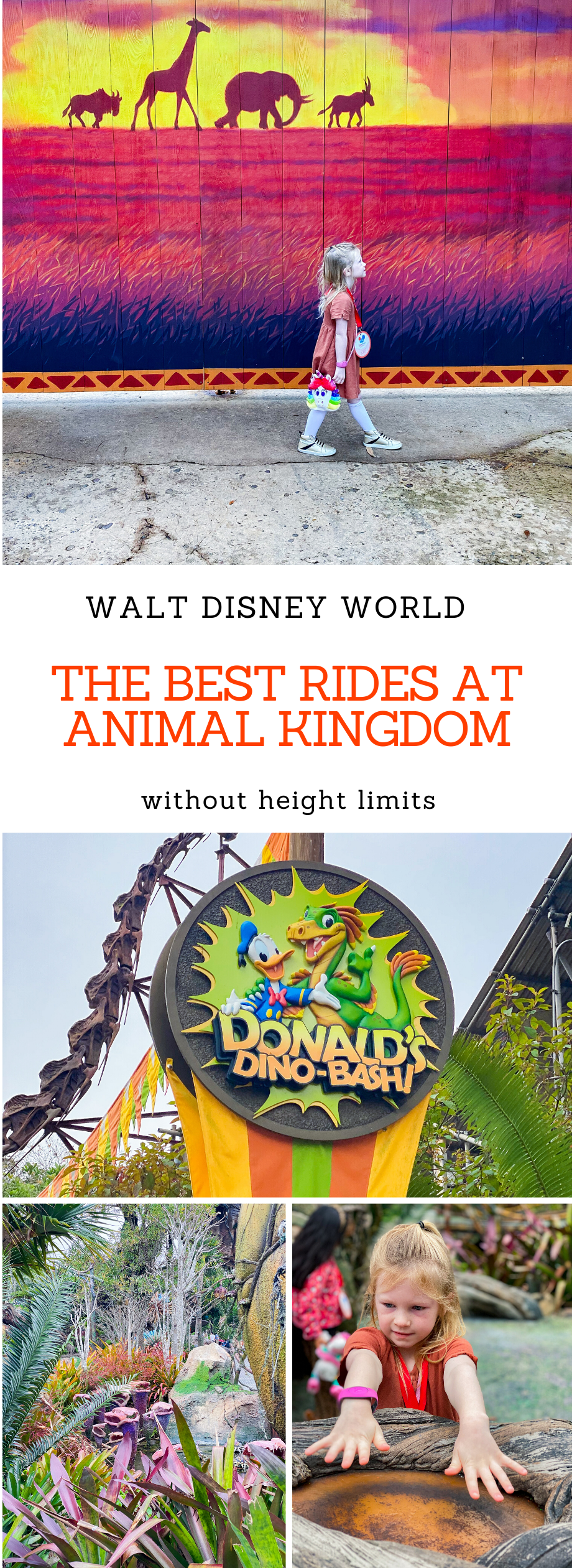 Looking for the Best Rides at Animal Kingdom (and activities) that every member of the family can participate in? These are your best options with low or no height limits at this Walt Disney World Park!