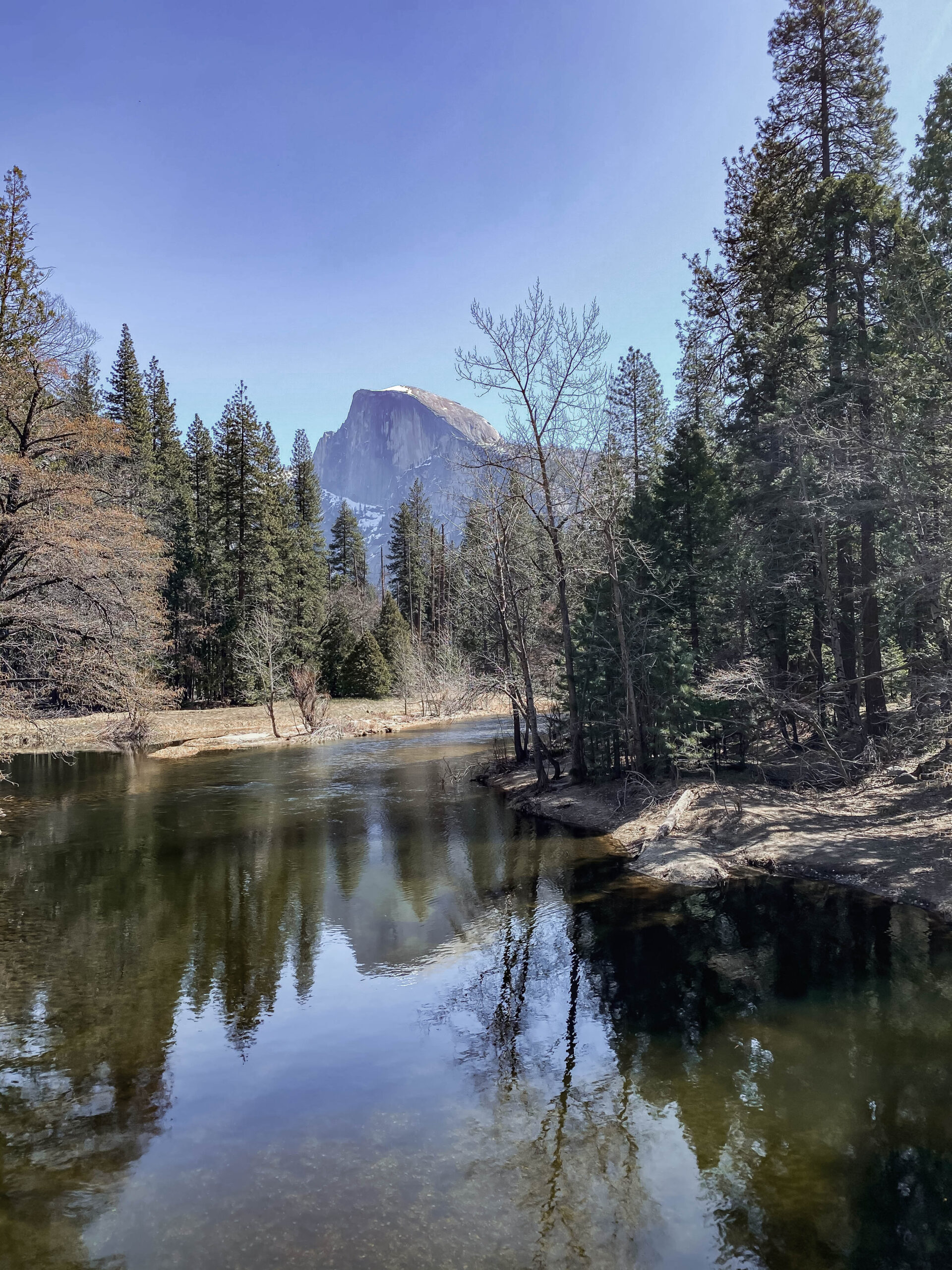 Visiting Bass Lake and Yosemite? This is a full family travel guide!